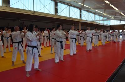 Démonstration karaté au dojo