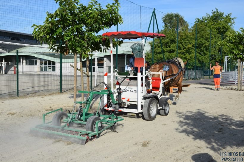 nouvel-equipement-desherbage-cheval-territorial3