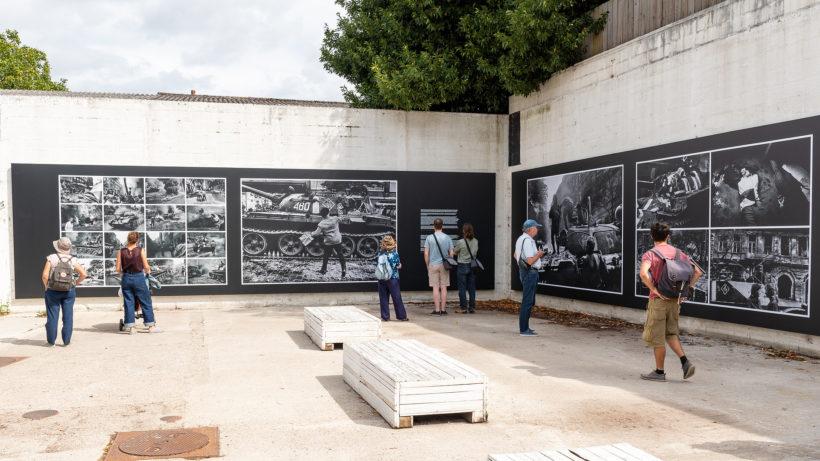 Festival Photo La Gacilly 2019 - © Jean Michel Niron (17)